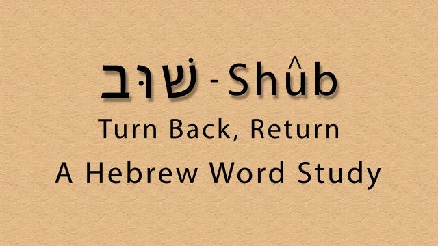 שׁוּב – Shûb – A Hebrew Word Study – Mustard Seedlings